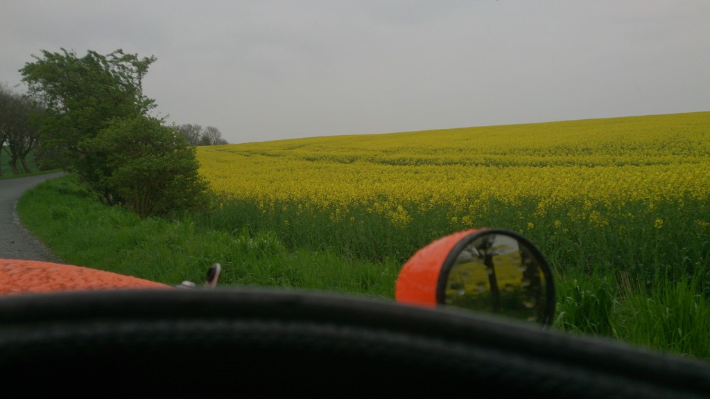 Strada og de gule marker