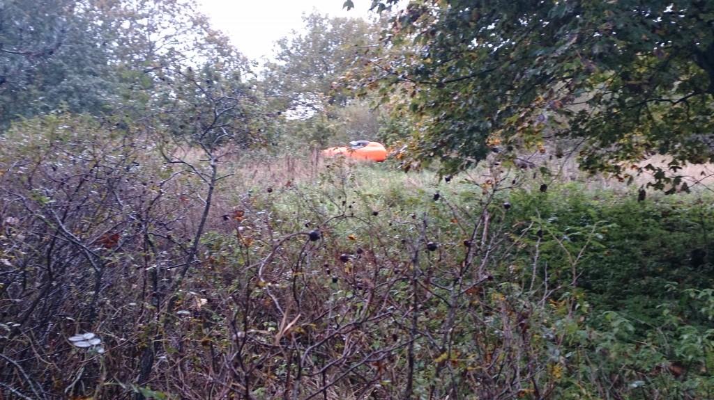 Strada på skovsti