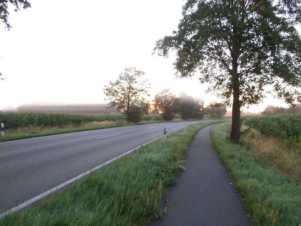 Morgensol og dis på tysk cykelsti