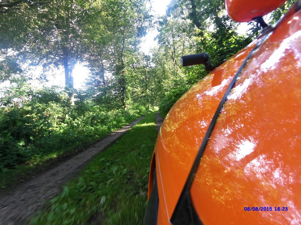 Strada på skovsti i Tyskland